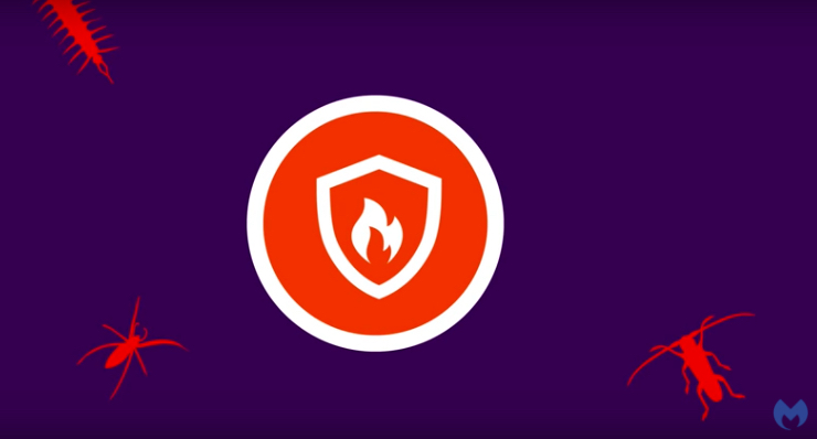 Watch Malwarebytes Endpoint Security in action